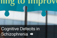 View Cognitive Defecits in Schizophrenia Collateral Images